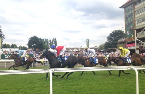 A Day at York Races