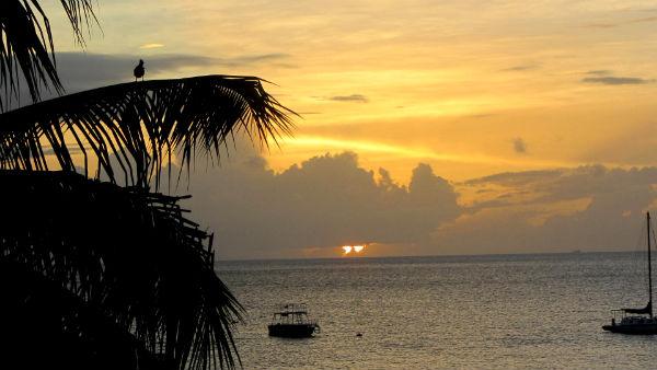 Tropical Sunset Barbados