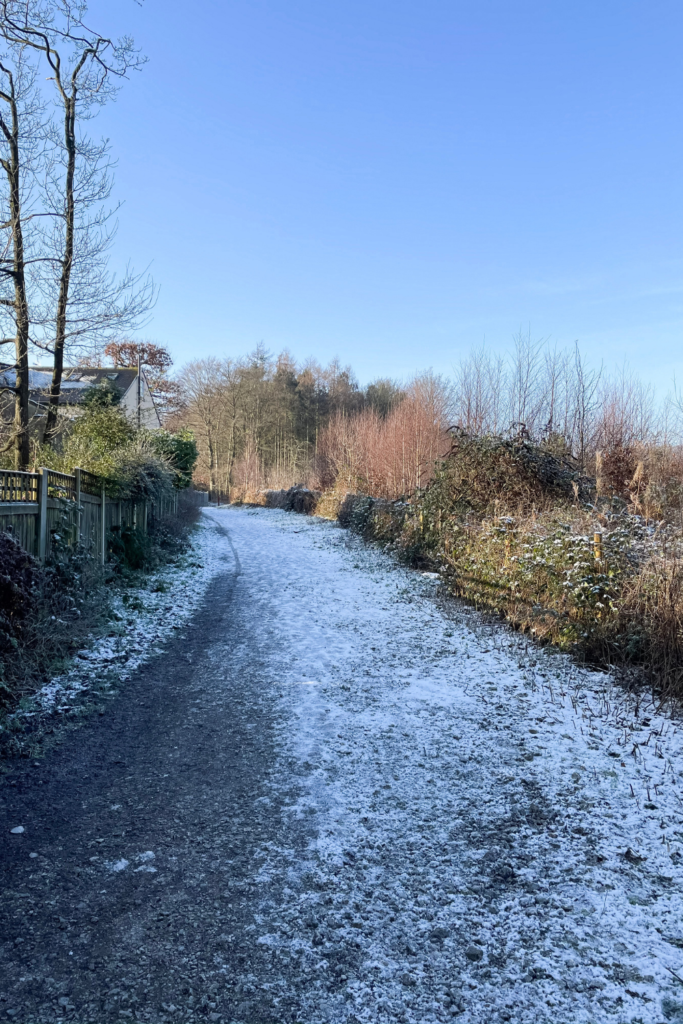 A wintry walk in Yorkshire