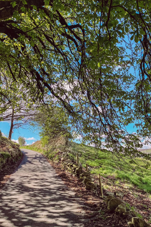 Yorkshire Walks