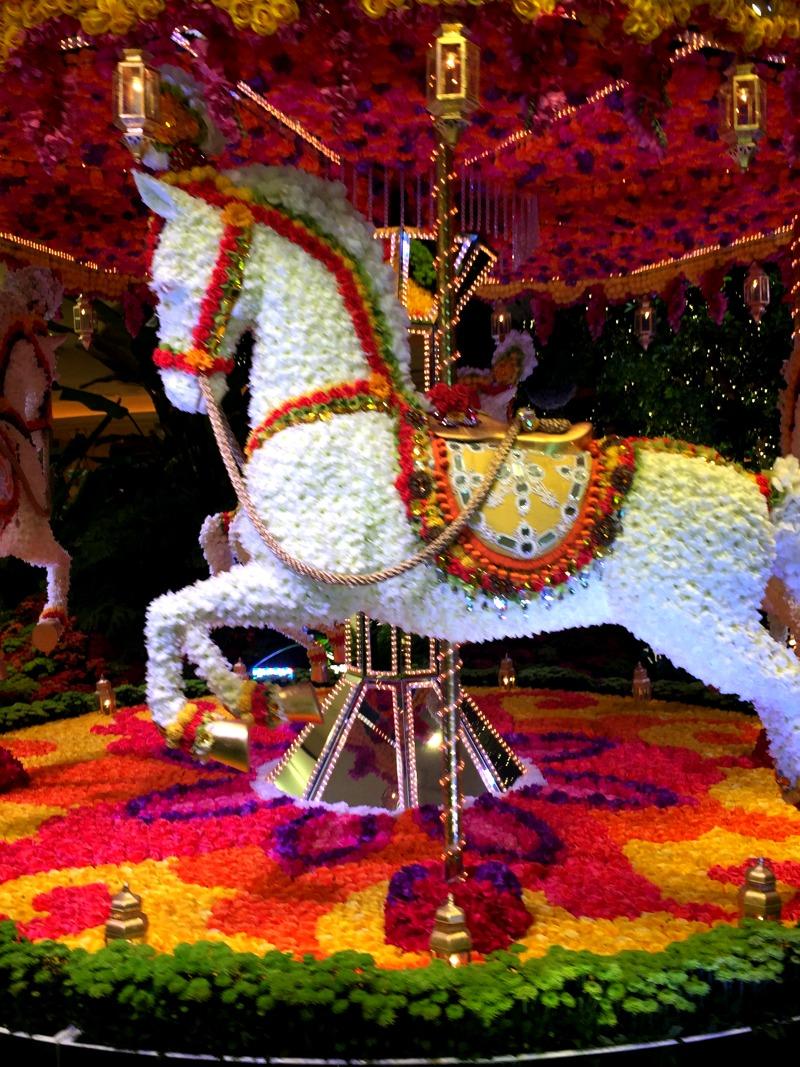 wynn horse