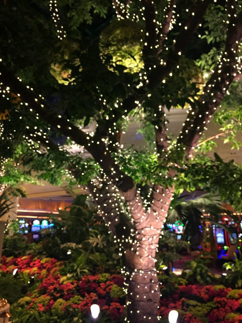 wynn tree